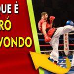 O que é o Pró-Taekwondo de acordo com Pesquisas na Internet